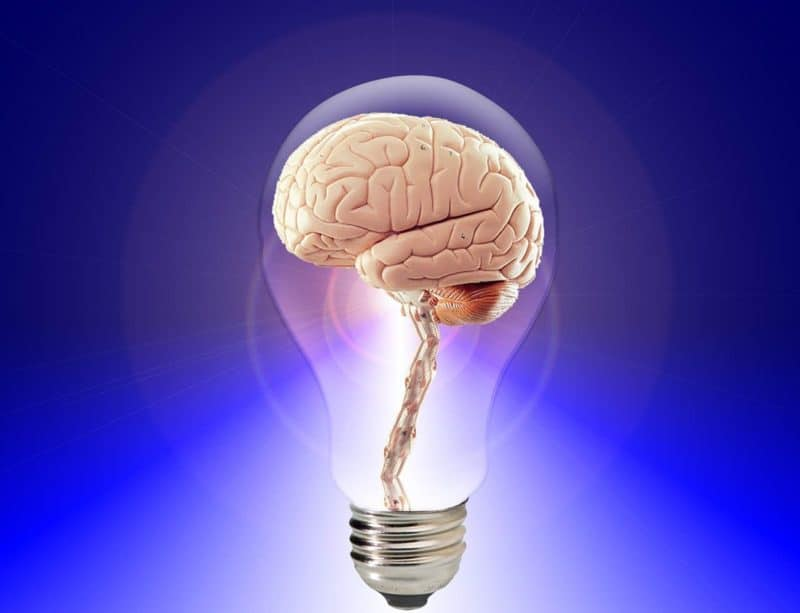מוח בתוך נורה דולקת